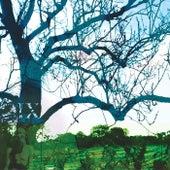 Wimble Toot EP by Banco de Gaia