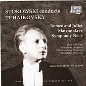 Stolowski Conducts Tchaikovsky by Various Artists