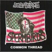 Common thread by Spermbirds