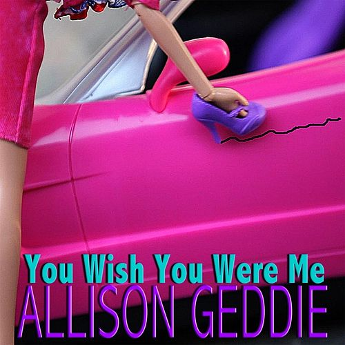 You Wish You Were Me by Allison Geddie