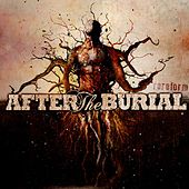Rareform by After The Burial