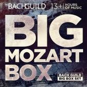 Big Mozart Box by Various Artists