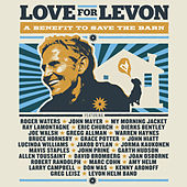 Love For Levon by Various Artists