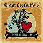 Live At the Royal Festival Hall by Grant Lee Buffalo