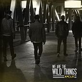 Amour by We Are the Wild Things
