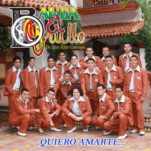Quiero Amarte by Banda El Grullo