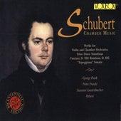 Schubert Chamber Music by Various Artists