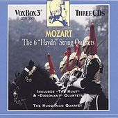 Mozart: The 6