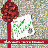 What I Really Want For Christmas by Brian Wilson