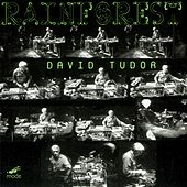 Tudor: Rainforest - Versions I (1968) & Iv (1973) by David Tudor