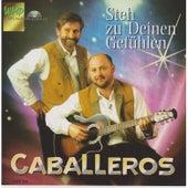 Steh zu deinen Gefühlen by Los Caballeros