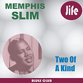 Two Of A Kind by Memphis Slim