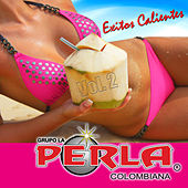 La Perla Colombiana 20 Exitos, Vol. 2 by Grupo Perla Colombiana