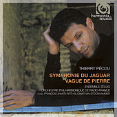 Pécou: Symphonie du jaguar; Vague de Pierre by Various Artists