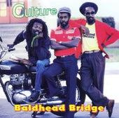 Baldhead Bridge by Culture