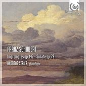 Schubert: Impromptus, Op.142, Sonata D894 by Andreas Staier