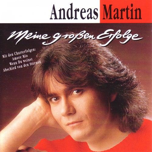 Meine großen Erfolge by ANDREAS MARTIN