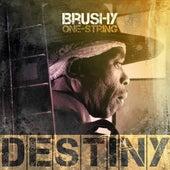 Destiny by Brushy One String