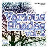 Lars Behrenroth presents Various Shades Vol.2 by Various Artists