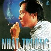 Toi Va Di Vang von Nhat Truong