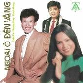 Ngoai o Den Vang by Various Artists