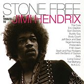 Stone Free: A Tribute to Jimi Hendrix von Various Artists