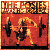 Amazing Disgrace by The Posies