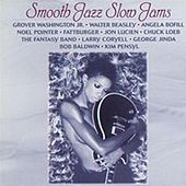 Smooth Jazz Slow Jams von Various Artists