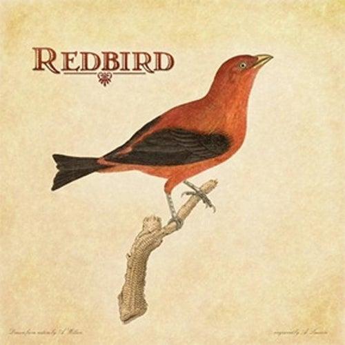 Redbird by Redbird