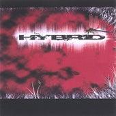 Hybrid by Hybrid (1)