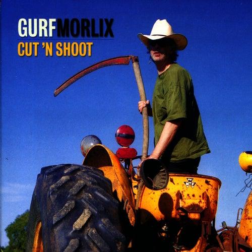 Cut  'n'  Shoot by Gurf Morlix