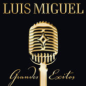 Grandes Exitos - Us Cd Version by Luis Miguel