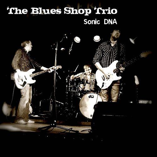 Sonic DNA by The Blues Shop Trio