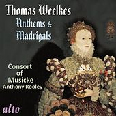 Thomas Weelkes: Anthems & Madrigals by Consort Of Musicke