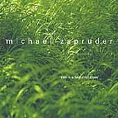 This Is A Beautiful Town by Michael Zapruder