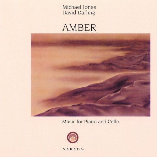 Amber by David Darling