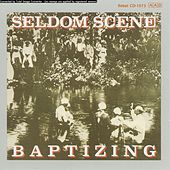 Baptizing by The Seldom Scene