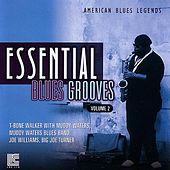 Essential Blues Grooves Vol. 2 by Various Artists