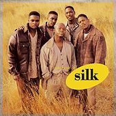 The Best Of Silk by Silk