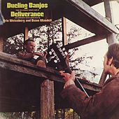 Dueling Banjos by Eric Weissberg