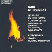 The Rite of Spring/The Firebird Suite by Igor Stravinsky