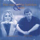Hur man räddar kärleken & annat - Svenska visor - Swedish songs by Johanna Grüssner