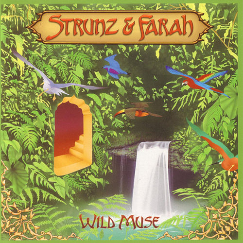 Wild Muse by Strunz and Farah