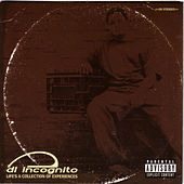 Life's a Collection of Experiences by DL Incognito