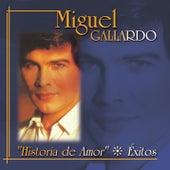 Historia De Amor: Exitos by Miguel Gallardo