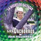 La Muerte de Baltazar by Los Cachorros De Juan Villarreal