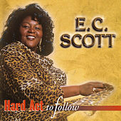 Hard Act To Follow by E.C. Scott