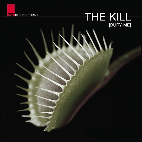 The Kill by 30 Seconds To Mars