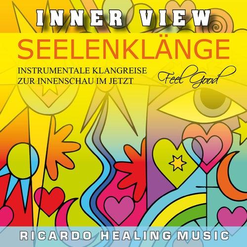 Inner View - Seelenklänge - Instrumentale Klangreise zur Innenschau im Jetzt by Ricardo M.