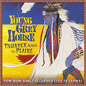 Thunder Across the Plainz by Young Grey Horse